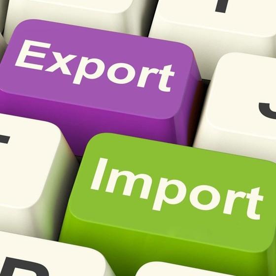 Kim ngạch xuất nhập khẩu hơn 200 tỷ USD ảnh 1