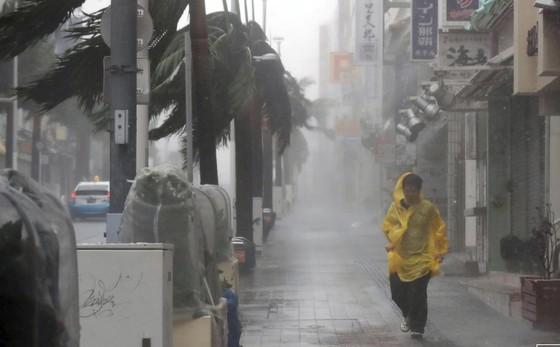 Bão Trami đổ bộ Nhật Bản, 5 người bị thương ảnh 1