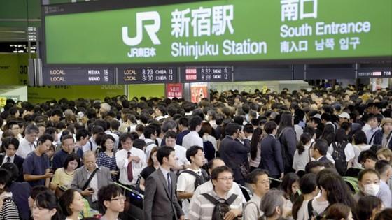 Bão Trami đổ bộ Nhật Bản, 2 người chết, hơn 150 người bị thương ảnh 3