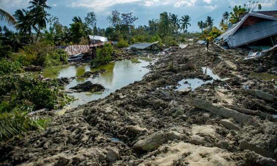 Số người thiệt mạng trong thảm họa kép tại Indonesia đã lên đến 1.944 người ảnh 14