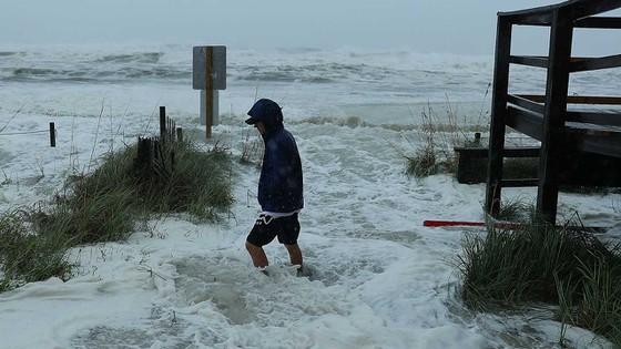 Florida tan hoang sau siêu bão Michael mạnh nhất kể từ năm 1992 ảnh 21