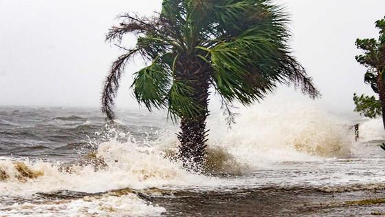 Florida tan hoang sau siêu bão Michael mạnh nhất kể từ năm 1992 ảnh 22
