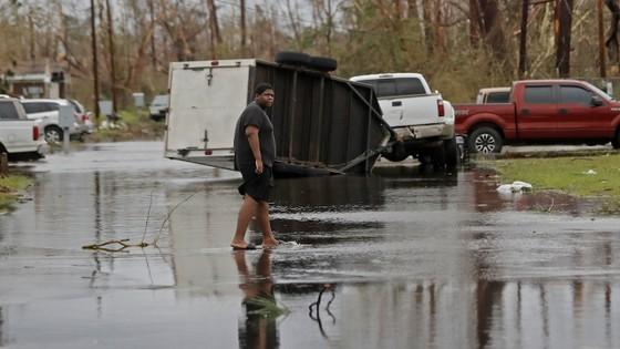 Florida tan hoang sau siêu bão Michael mạnh nhất kể từ năm 1992 ảnh 40