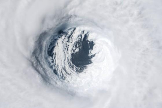 Florida tan hoang sau siêu bão Michael mạnh nhất kể từ năm 1992 ảnh 1