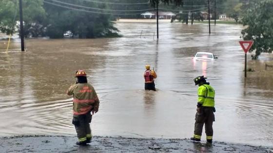 Siêu bão Michael tấn công Florida: 17 người chết, một căn cứ quân sự bị san bằng, cả thị trấn bị xóa sổ ảnh 18