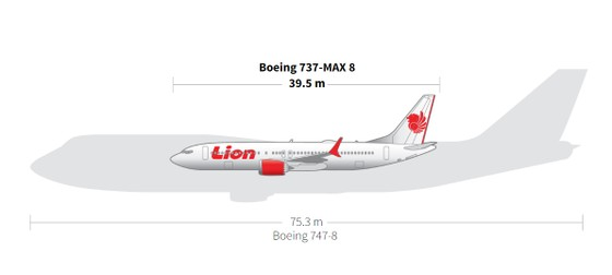 Vụ rơi máy bay tại Indonesia: Phát hiện sự cố chỉ 2 phút sau khi cất cánh  ảnh 19