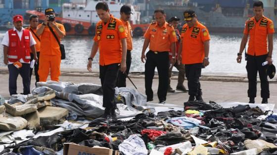 Vụ rơi máy bay tại Indonesia: Phát hiện sự cố chỉ 2 phút sau khi cất cánh ảnh 12
