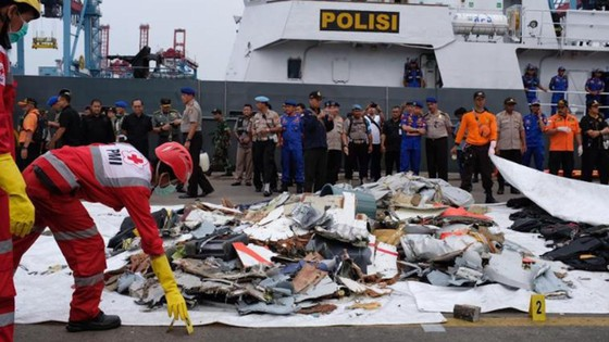 Vụ rơi máy bay tại Indonesia: Tìm thấy hộp đen máy bay ảnh 2