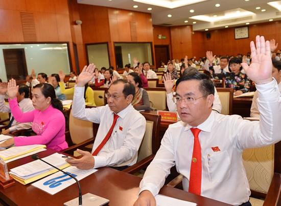 HĐND TPHCM triển khai nghị quyết về cơ chế, chính sách đặc thù ảnh 3