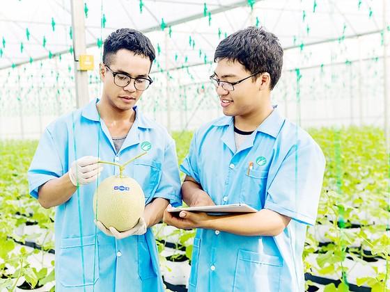 Ứng dụng công nghệ vào sản xuất nông nghiệp ảnh 1