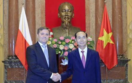 Chủ tịch nước Trần Đại Quang tiếp các đại sứ trình quốc thư ảnh 1