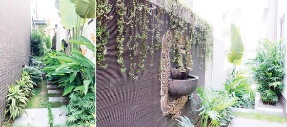 """Mãn nhãn với không gian sống xanh  tại """"khu phố nhà giàu"""" ở Hà Nội ảnh 4"""