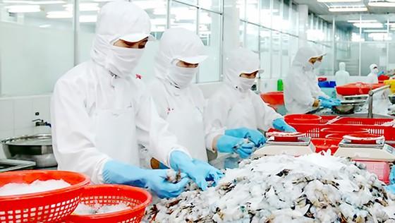 Nỗ lực gỡ thẻ vàng hải sản ảnh 1