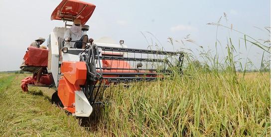 Định vị sản phẩm nông nghiệp ảnh 1