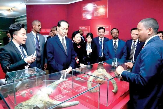 Nhiều tiềm năng hợp tác giữa Ethiopia và Việt Nam ảnh 1