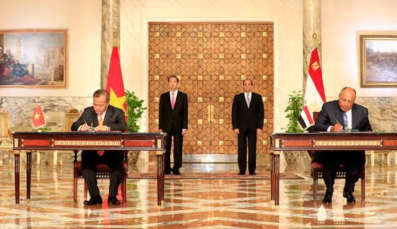 Việt Nam - Ai Cập phấn đấu đưa kim ngạch thương mại song phương lên 1 tỷ USD ảnh 1