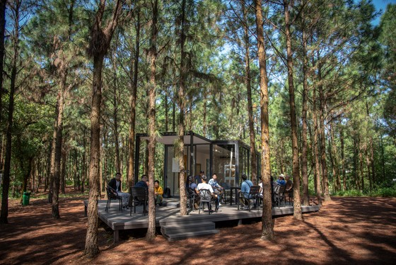 Art In The Forest 2018: Khu rừng nghệ thuật độc đáo nằm giữa thiên nhiên xanh cổ tích ảnh 2