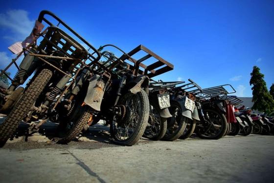 [ẢNH] Ngỡ ngàng một vạn xe máy không ai nhận ở TP.HCM chờ bán sắt vụn - ảnh 11