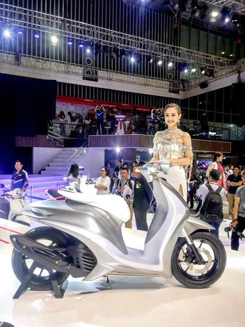 Khai mạc Vietnam Motorcycle Show 2017  ảnh 13