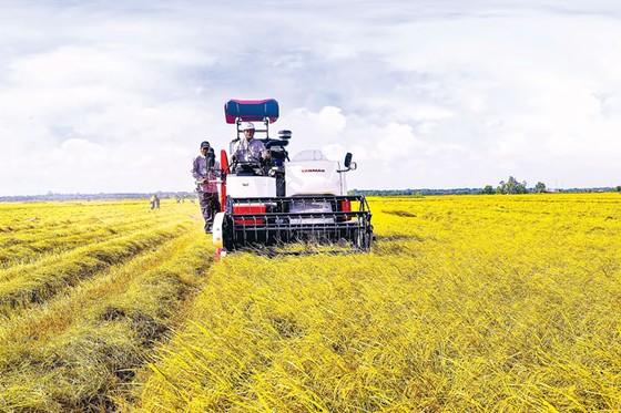 Nông dân Việt tiếp cận công nghệ Nhật ảnh 2