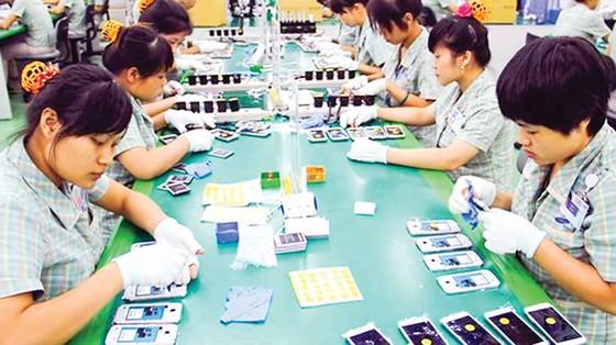 Phép lạ kinh tế Việt Nam ảnh 1