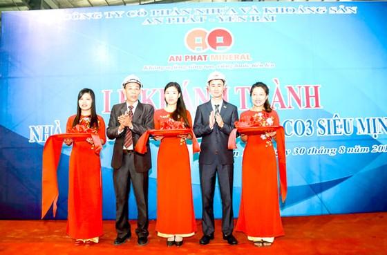 Khánh thành nhà máy sản xuất bột đá CaCO3 siêu mịn ảnh 2