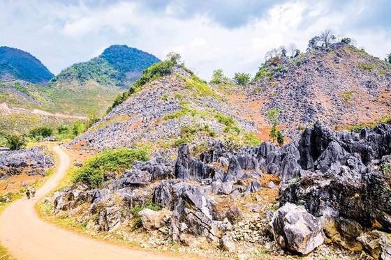 Cao nguyên đá tai mèo ở Điện Biên ảnh 2