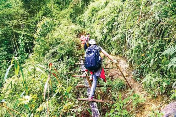 Chinh phục núi Tà Xùa ảnh 11