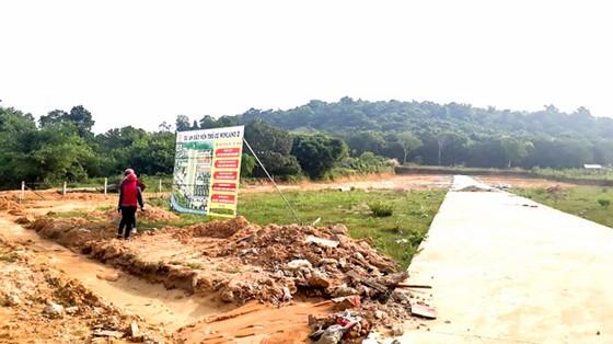 Đón đầu đặc khu kinh tế: Đất đai chuyển nhượng thiếu kiểm soát ảnh 1