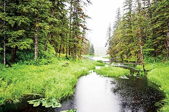 Alaska, điểm du lịch hấp dẫn ảnh 3