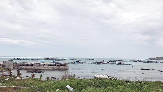 Bão số 9 sắp đổ bộ, Nhiệt điện Vĩnh Tân tạm dừng vận hành, từ chiều nay TPHCM sẽ mưa lớn ảnh 5