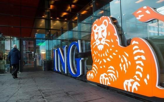 Hàng loạt ngân hàng, cơ quan Hà Lan bị tin tặc tấn công ảnh 1