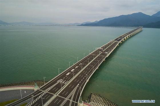 Trung Quốc khánh thành cây cầu vượt biển dài nhất thế giới nối Hong Kong với đại lục ảnh 8