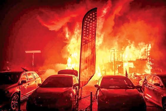 California đỏ lửa ảnh 1