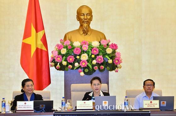 Chủ tịch Quốc hội Nguyễn Thị Kim Ngân: Phải đấu thầu công khai giao đất ảnh 1