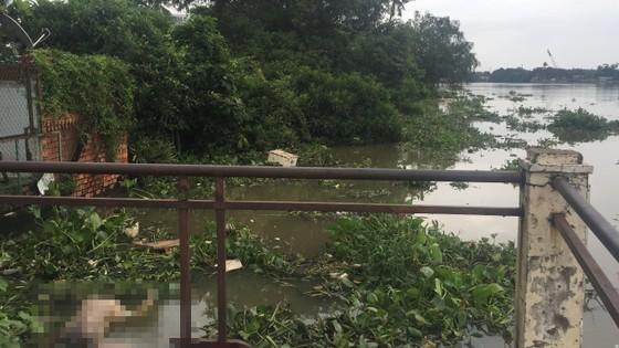 Hốt hoảng phát hiện thi thể nam thanh niên trôi trên sông Sài Gòn ảnh 2