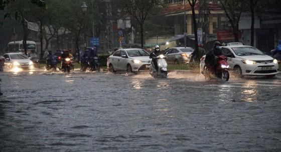 TPHCM mưa lớn, cây xanh bật gốc ngã đè người đi đường tử vong ảnh 3