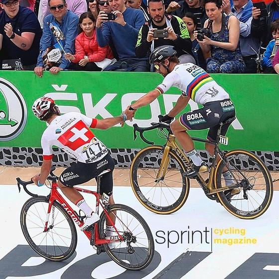 Xe đạp: Sagan đăng quang Paris-Roubaix, Goolaerts qua đời vì ngưng tim ảnh 2