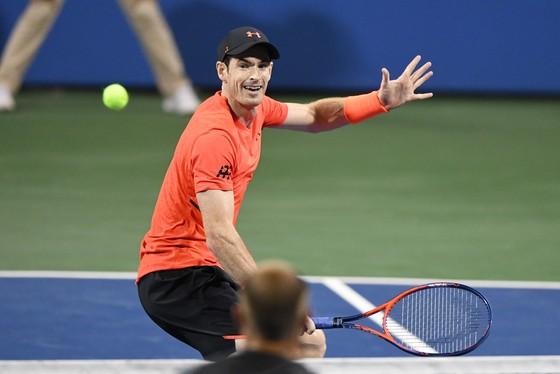 Citi Open 2018: Murray rút lui, Đệ tam kiếm loại Nishikori để vào bán kết ảnh 1
