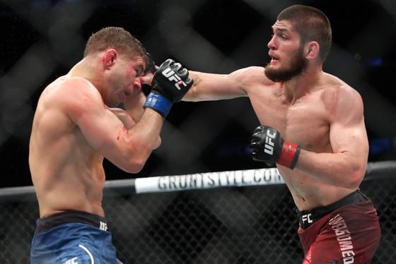 """Làng võ UFC: """"Gã Ailen láo xược"""" tái suất, đấu với """"Đại bàng Nga"""" Nurmagomedov ảnh 2"""