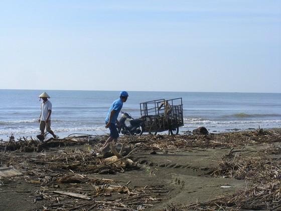 Kinh hoàng củi, rác ngập bãi biển Sầm Sơn tỉnh Thanh Hóa ảnh 2