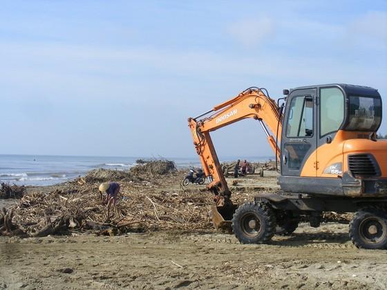 Kinh hoàng củi, rác ngập bãi biển Sầm Sơn tỉnh Thanh Hóa ảnh 3