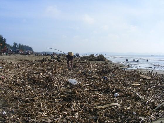 Kinh hoàng củi, rác ngập bãi biển Sầm Sơn tỉnh Thanh Hóa ảnh 7