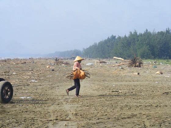 Kinh hoàng củi, rác ngập bãi biển Sầm Sơn tỉnh Thanh Hóa ảnh 9