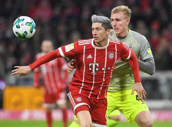 Tiền đạo Robert Lewandowski (trái, Bayern Munich) tranh bóng với hậu vệ Cologne. Ảnh: Getty Images.