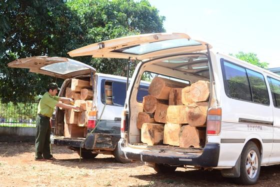 Gia Lai: Bắt giữ vụ vận chuyển 7m³ gỗ trái phép ảnh 1