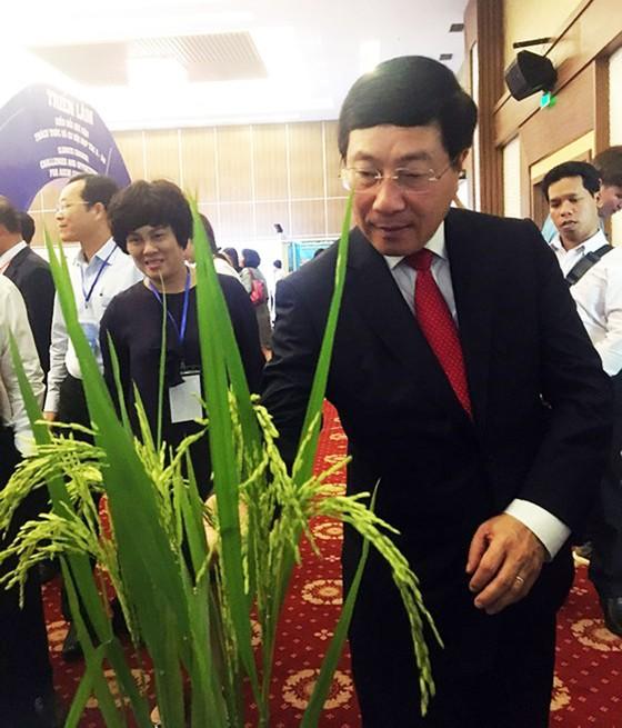 Phó Thủ tướng Phạm Bình Minh: ASEM cùng hành động mạnh mẽ ứng phó biến đổi khí hậu ảnh 6
