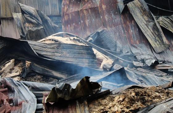 Đám cháy kinh hoàng thiêu rụi kho chứa bột mì ảnh 2