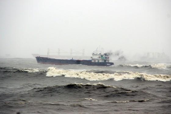 Đã cứu vớt được 80/99 thủy thủ gặp nạn trên biển Quy Nhơn, Bình Định ảnh 4