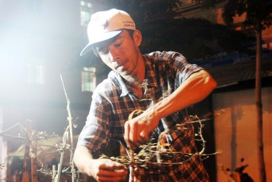 """Chủ mai Bình Định """"đổ bộ"""" QL1 chong đèn, dựng lều chào bán mai tết sớm ảnh 3"""